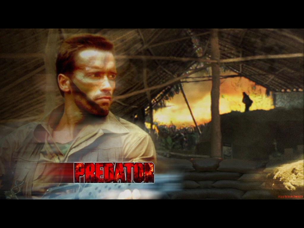 Movies Wallpaper: Predator - Hunting