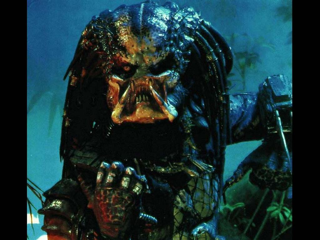 Movies Wallpaper: Predator