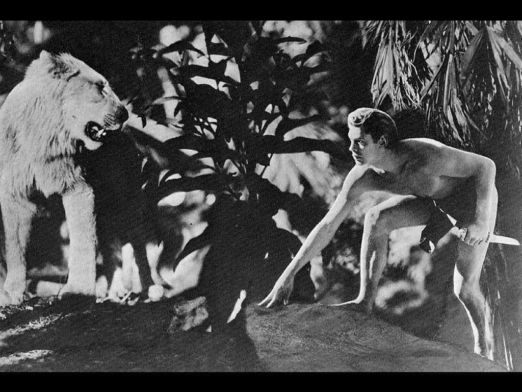 Movies Wallpaper: Tarzan, the Ape-Man