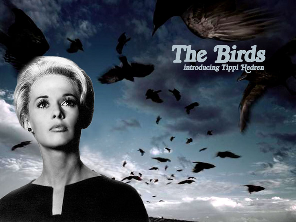 Movies Wallpaper: The Birds