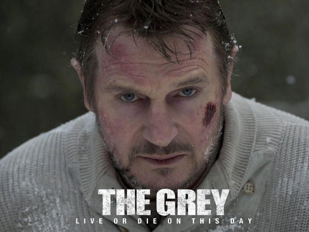 Movies Wallpaper: The Grey