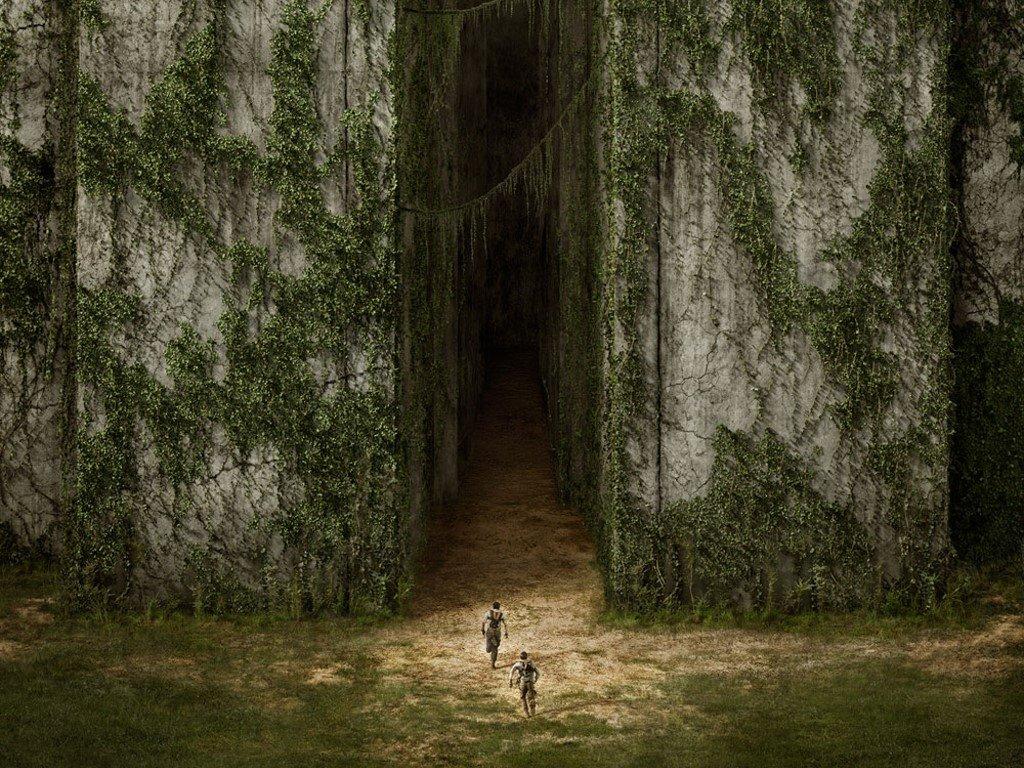 Movies Wallpaper: The Maze Runner