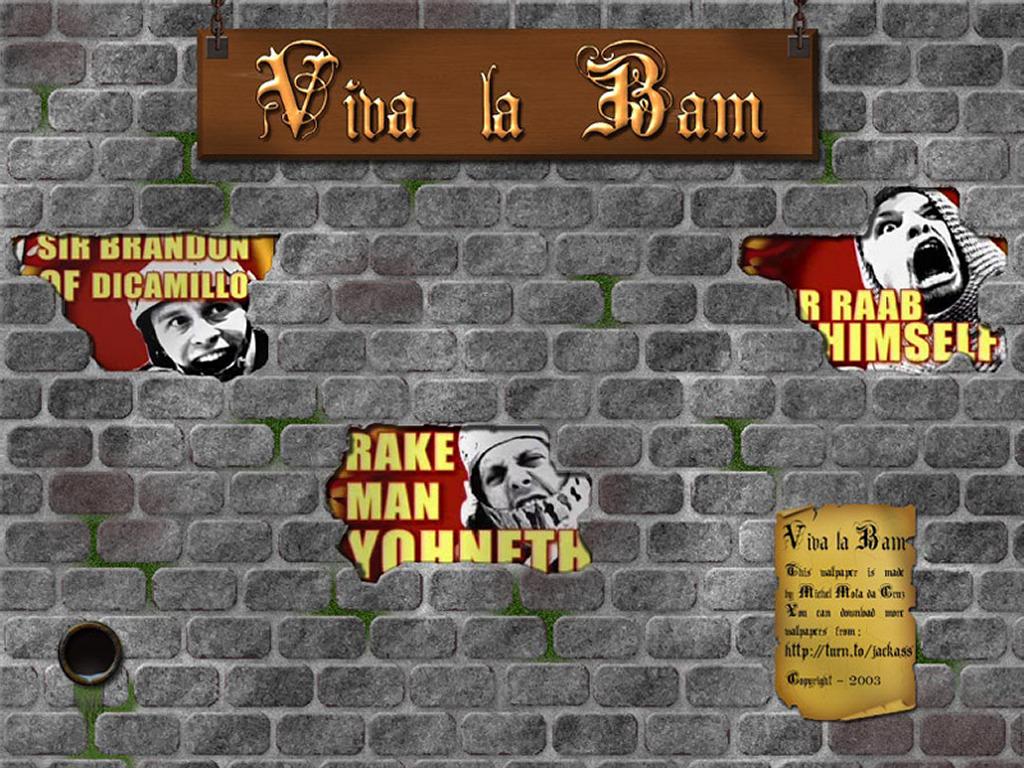 Movies Wallpaper: Viva La Bam
