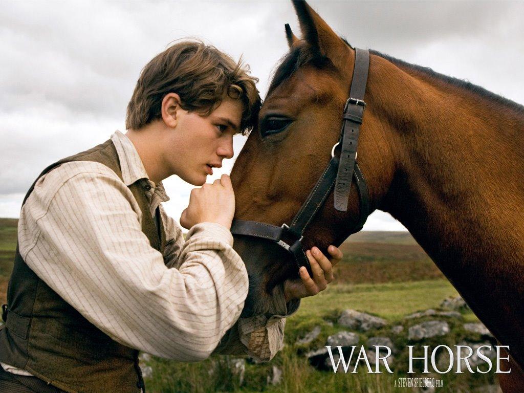 Movies Wallpaper: War Horse