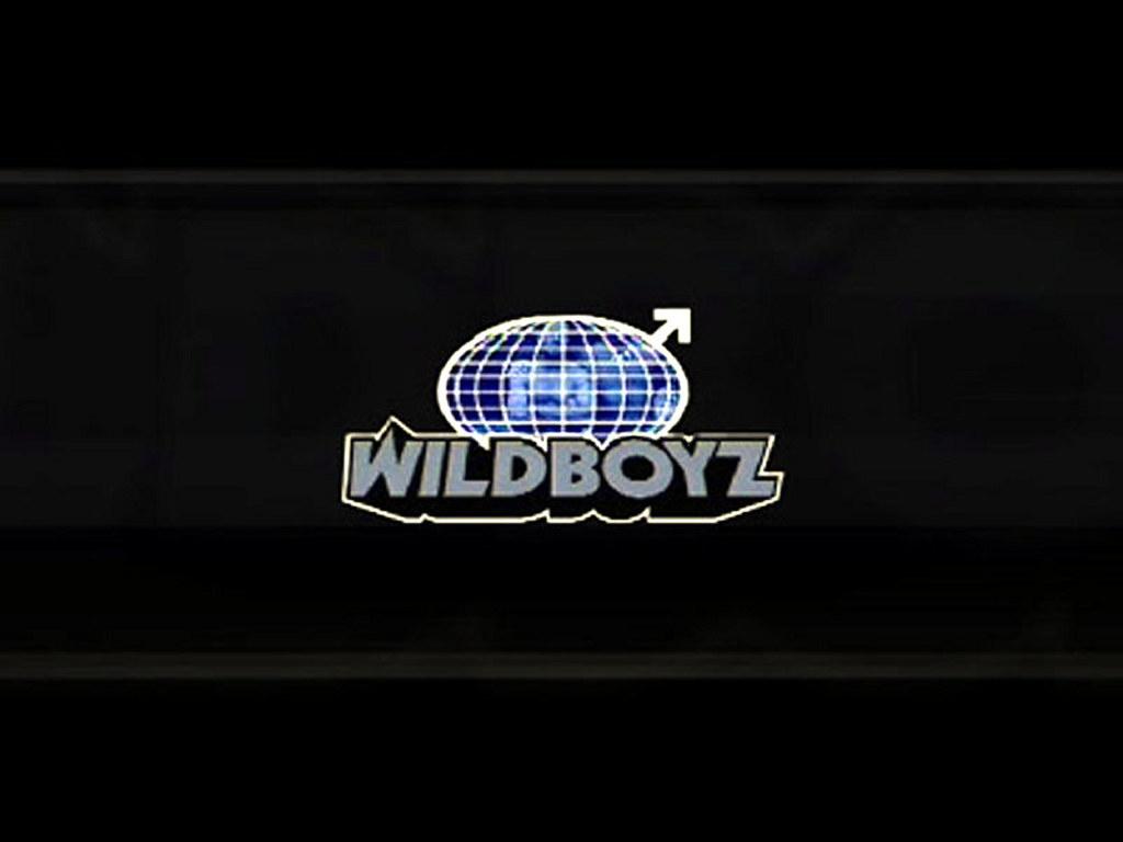 Movies Wallpaper: Wildboyz