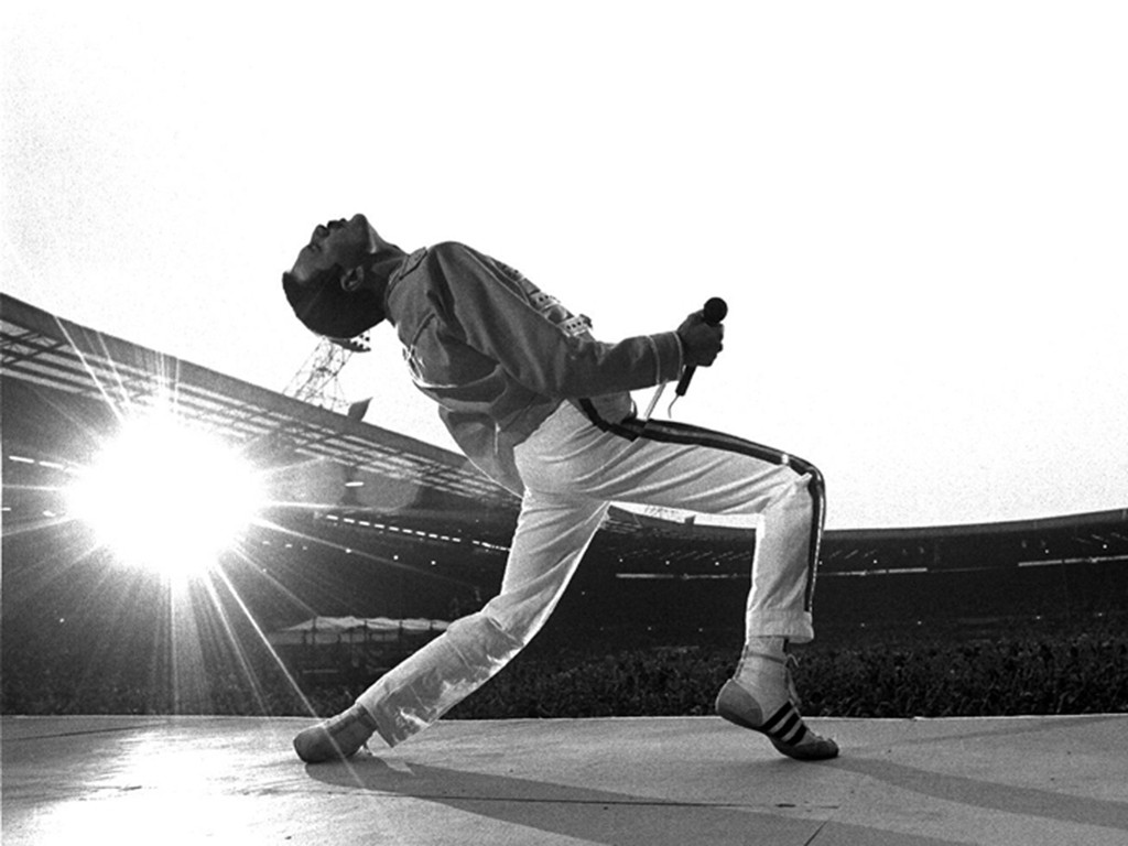 Music Wallpaper: Freddie Mercury