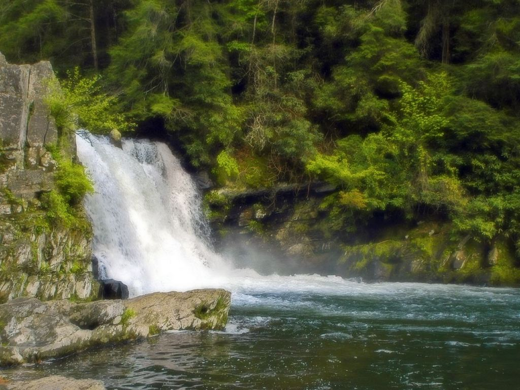 Nature Wallpaper: Abrahms Falls