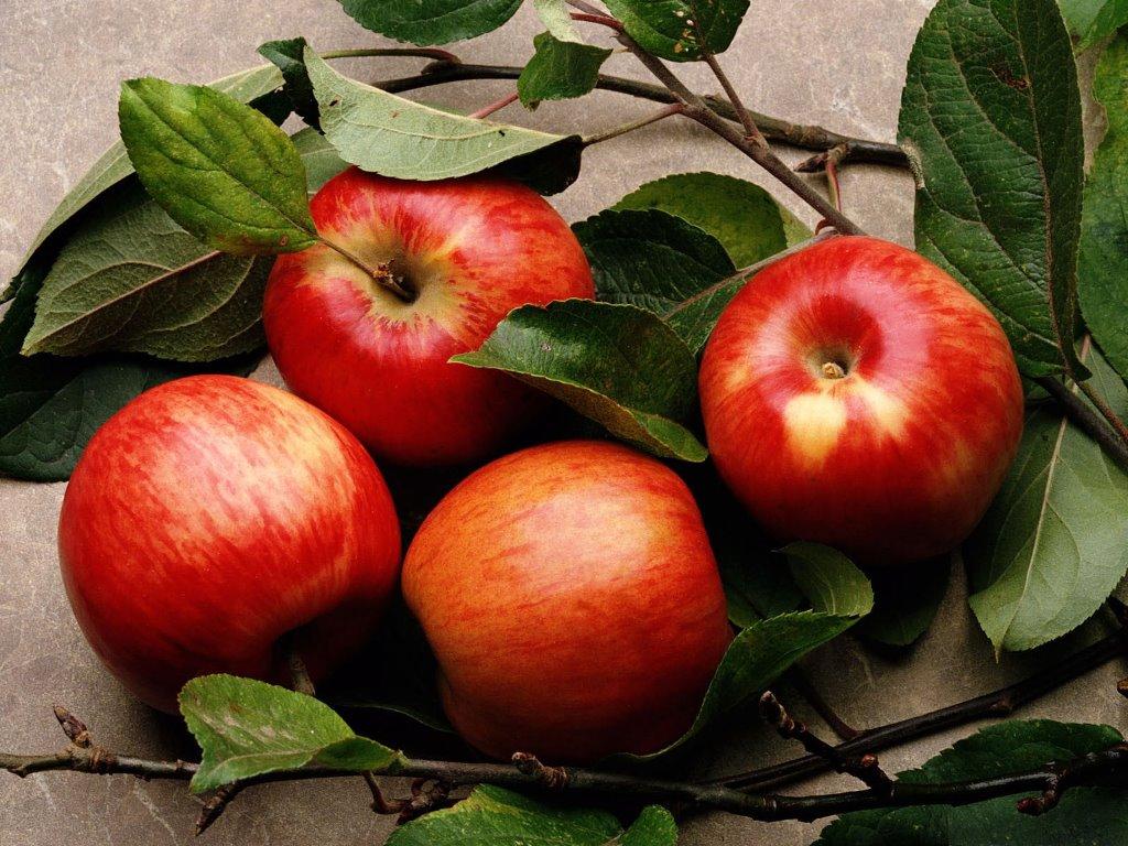 Nature Wallpaper: Apples