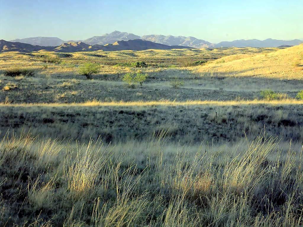 Nature Wallpaper: Arizona Trail