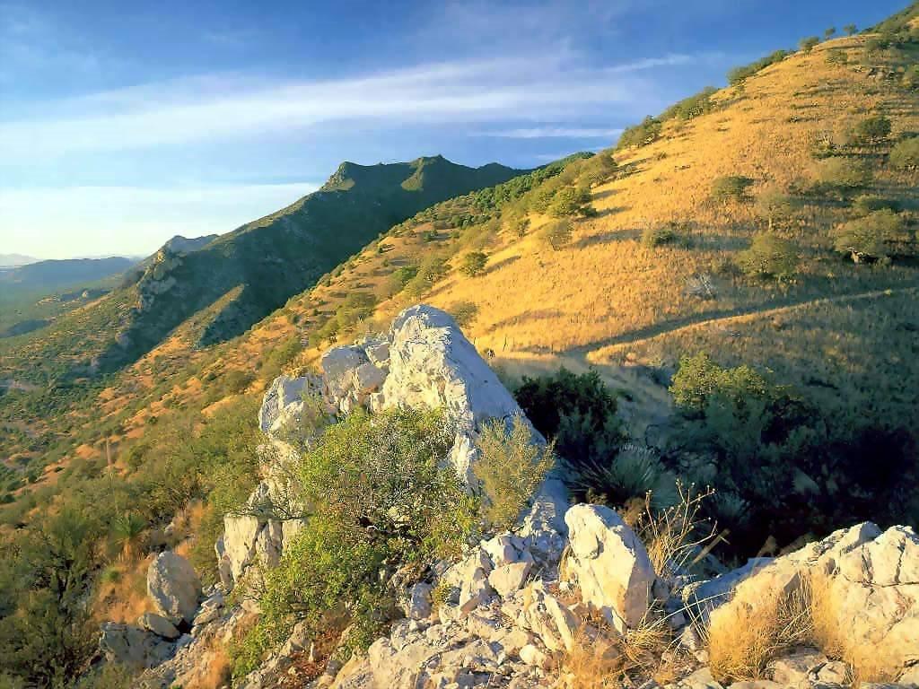 Nature Wallpaper: Arizon Trail