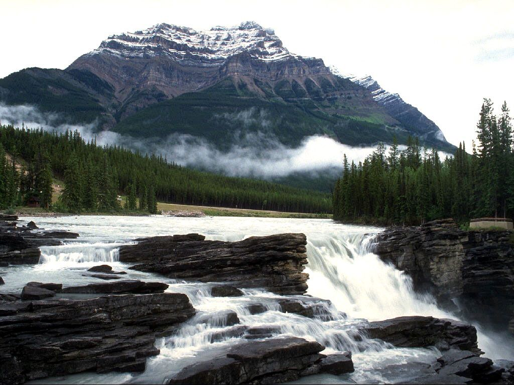 Nature Wallpaper: Athabasca Falls