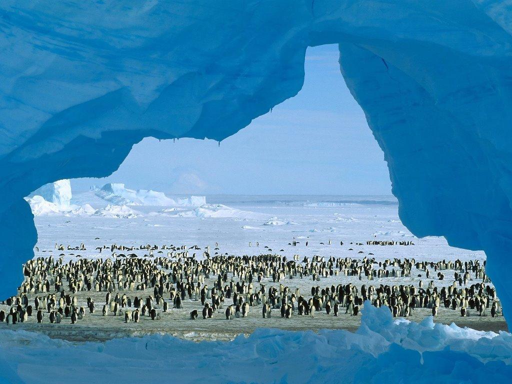 Nature Wallpaper: Antarctica
