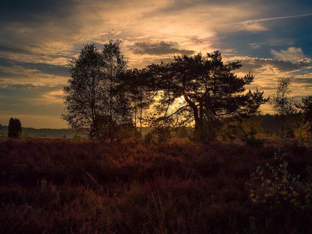 Nature Wallpaper: Autumn - Sunrise