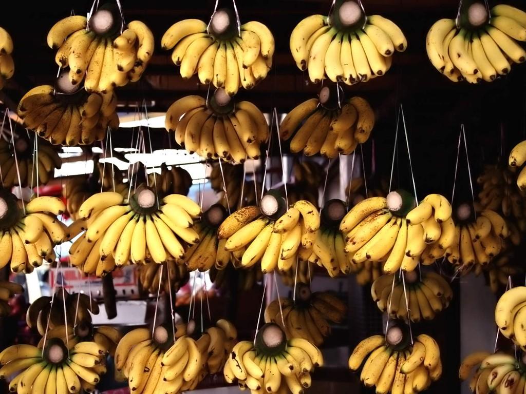 Nature Wallpaper: Bananas