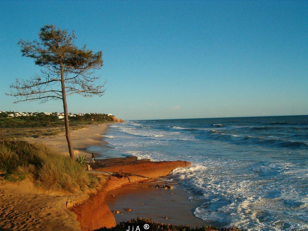 Nature Wallpaper: Beach