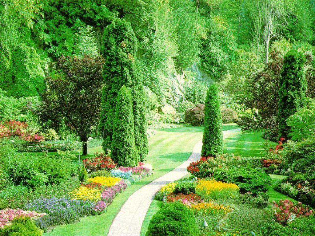 Nature Wallpaper: Beautiful Garden