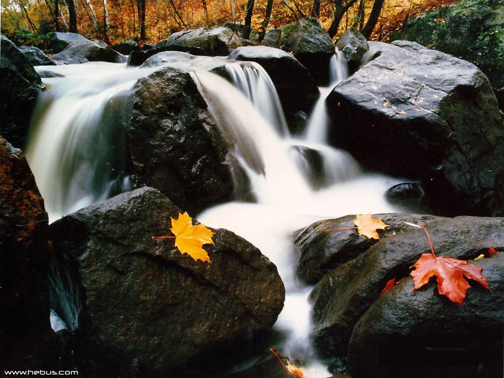 Nature Wallpaper: Beautiful River