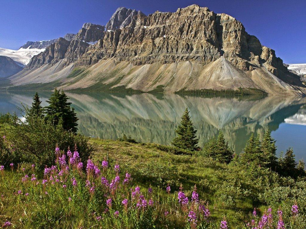 Nature Wallpaper: Bow Lake - Alberta, Canada