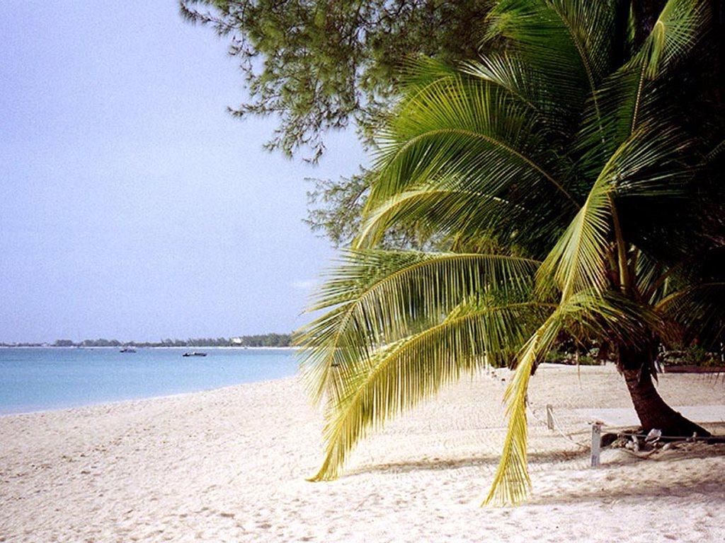 Nature Wallpaper: Caribbean Beach