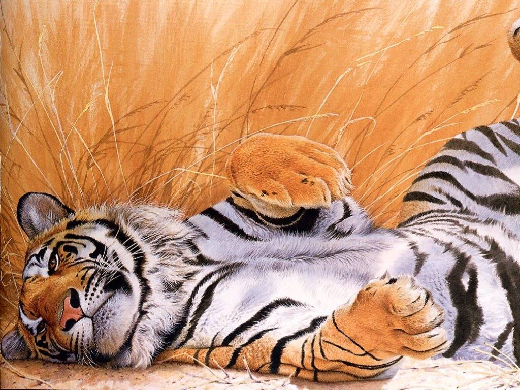 Nature Wallpaper: Charming Tiger