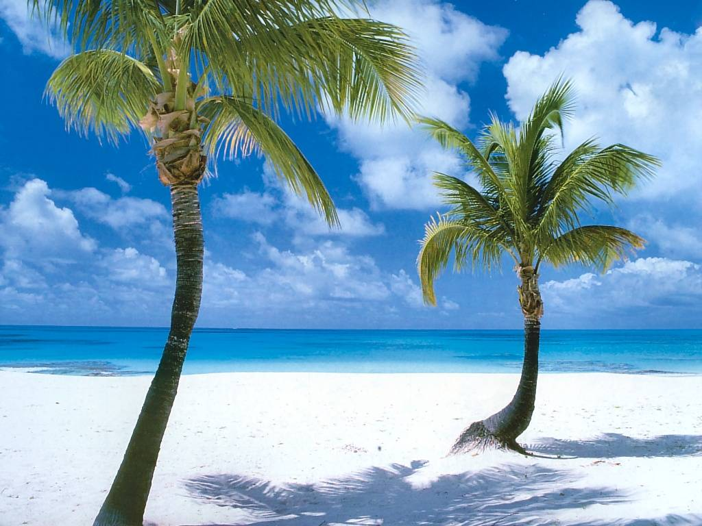 Nature Wallpaper: Coco Point Beach - Barbuda