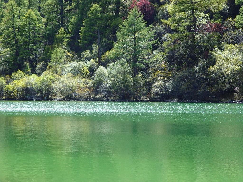 Nature Wallpaper: Daocheng Lake