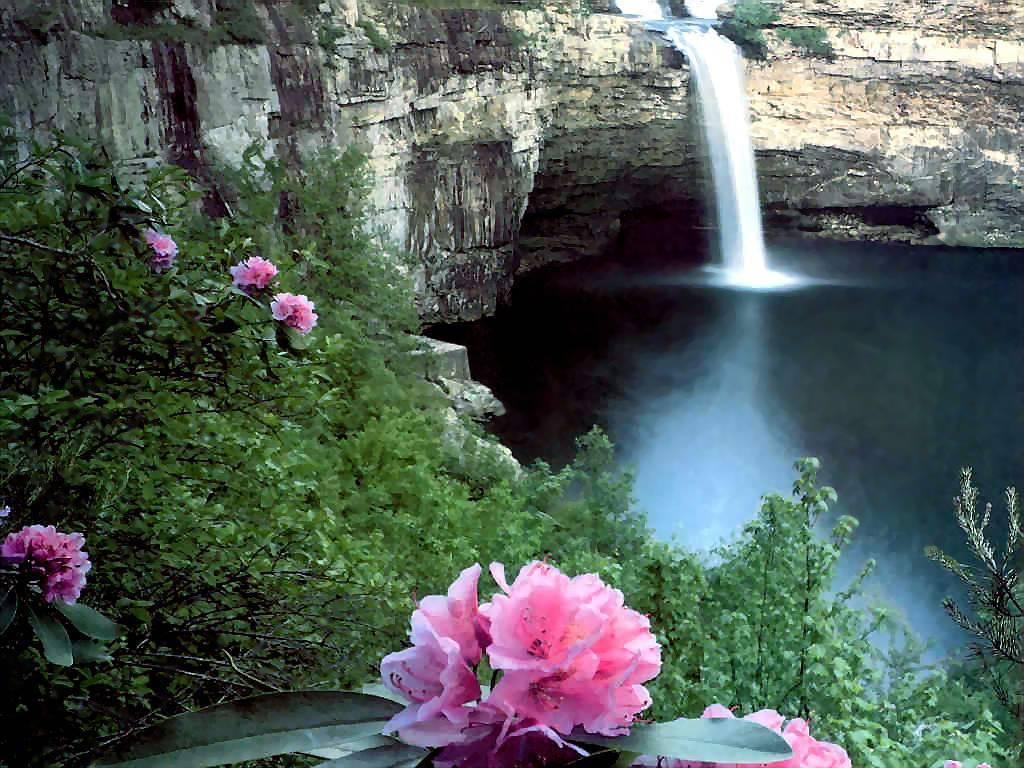 Nature Wallpaper: Desoto Falls
