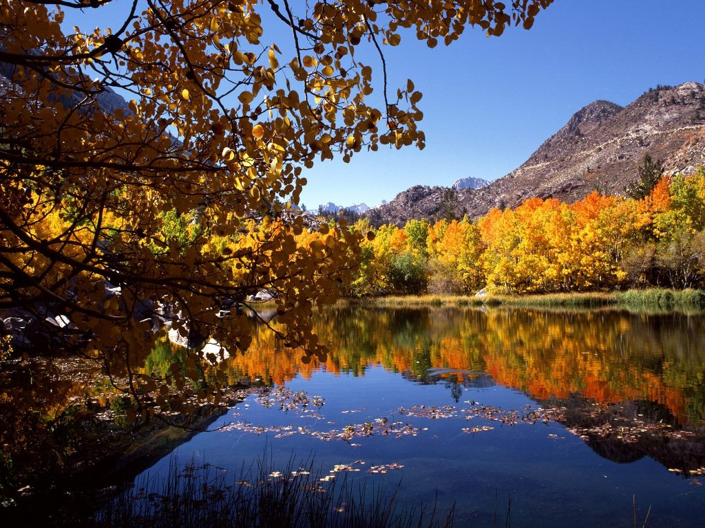 Nature Wallpaper: Eastern Sierra in Autumn - California