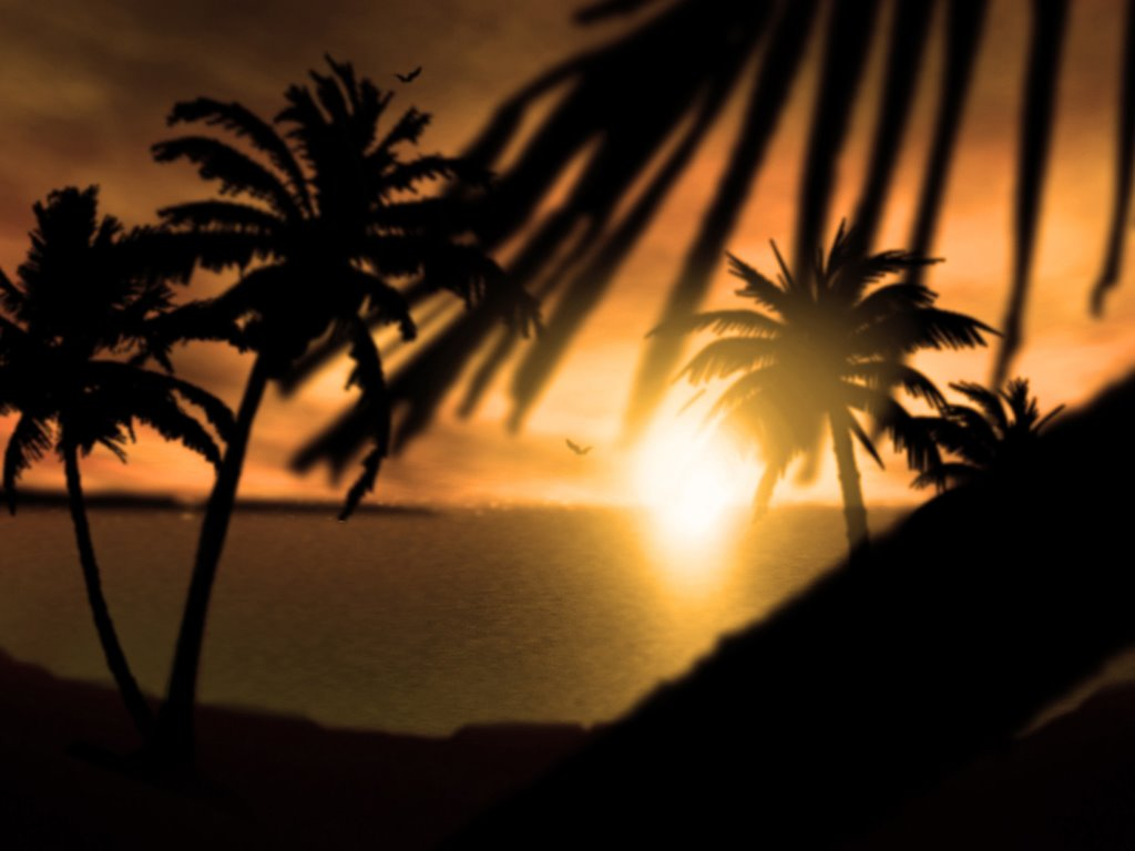 Nature Wallpaper: Fijian Sunset