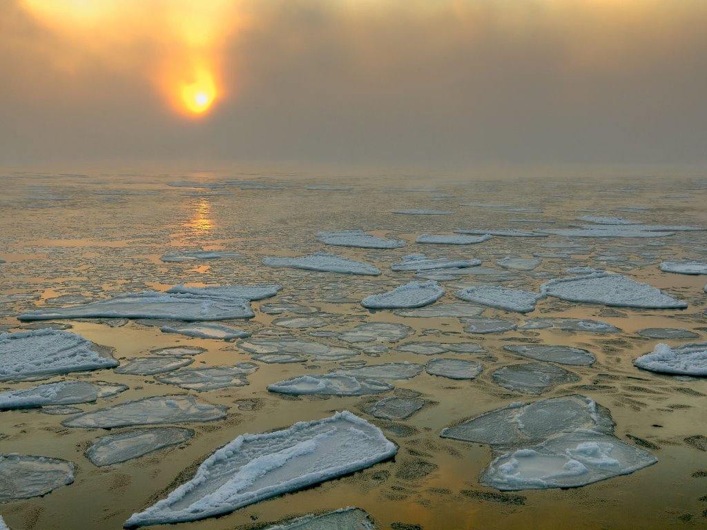 Nature Wallpaper: Frozen Black Sea