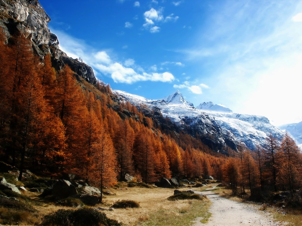 Nature Wallpaper: Gran Paradiso