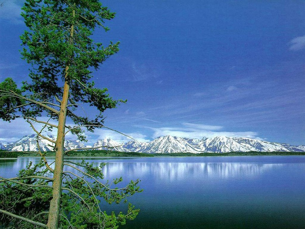 Nature Wallpaper: Grand Teton National Park