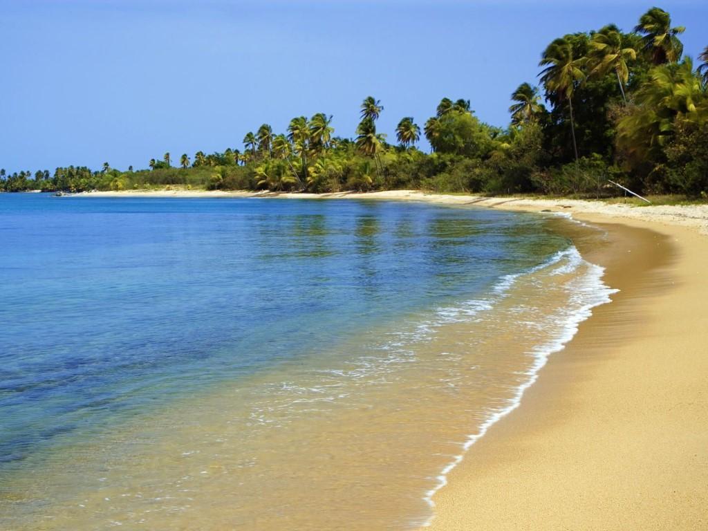Nature Wallpaper: Green Beach Island - Puerto Rico