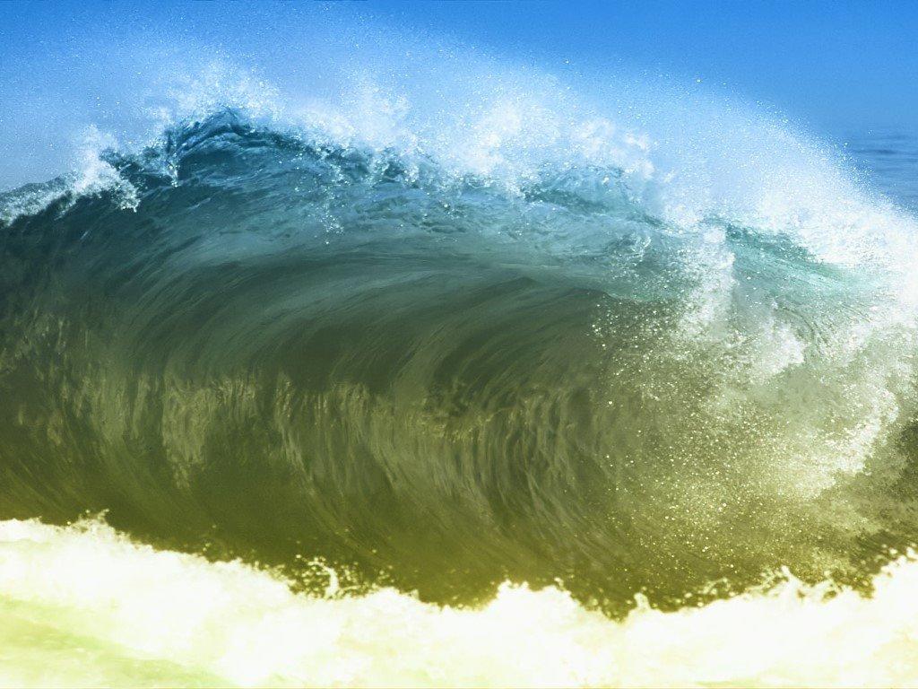 Nature Wallpaper: Green Waves