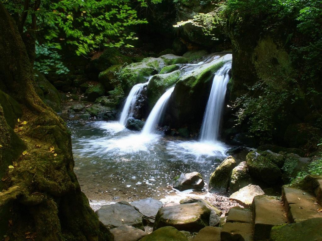 Nature Wallpaper: Hidden Falls