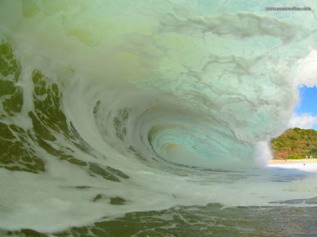 Nature Wallpaper: Inside Wave (by Clark Little)