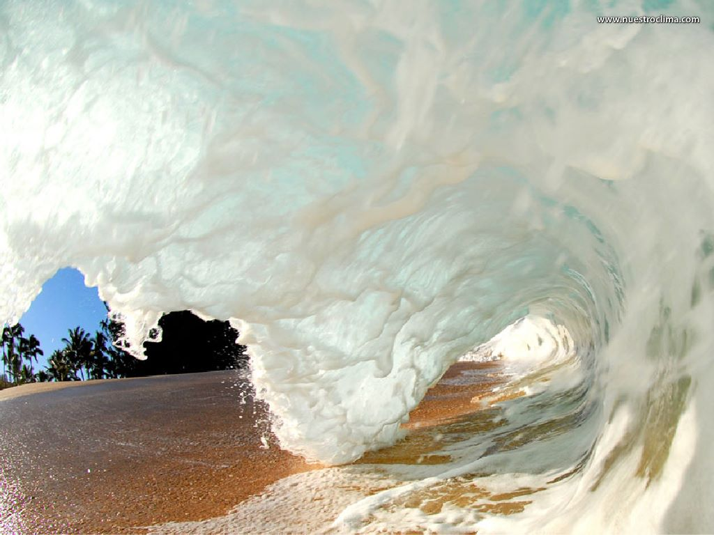Nature Wallpaper: Inside a Wave (by Clark Little)