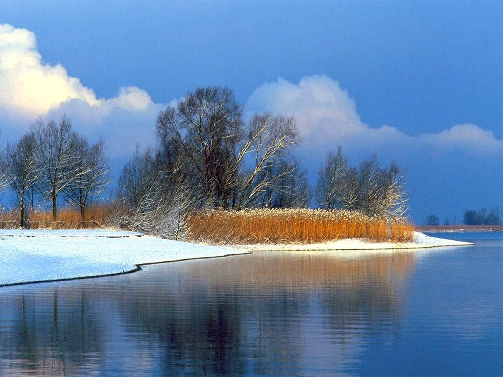 Nature Wallpaper: Lake Constance