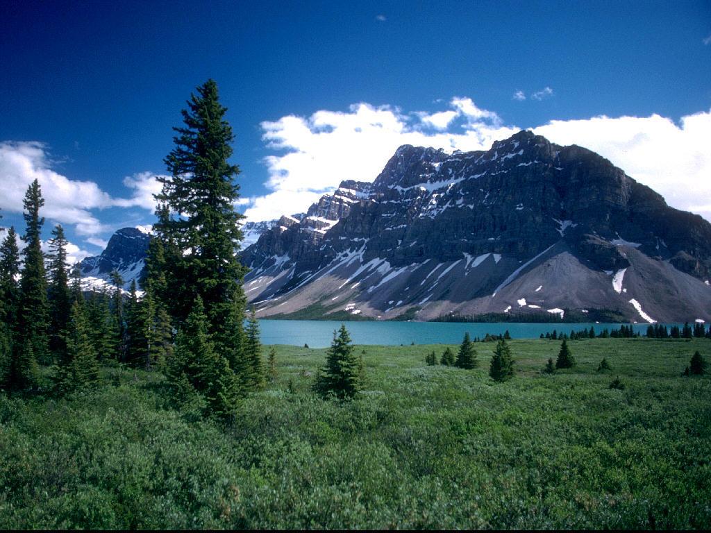 Nature Wallpaper: Lake Louise
