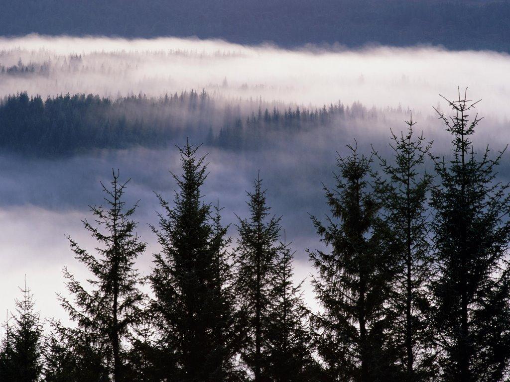 Nature Wallpaper: Highlands - Scotland