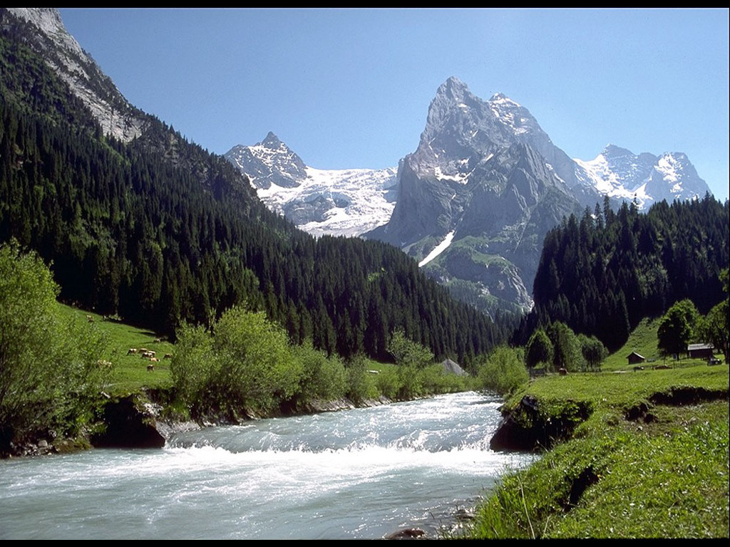 Nature Wallpaper: Mountain Stream