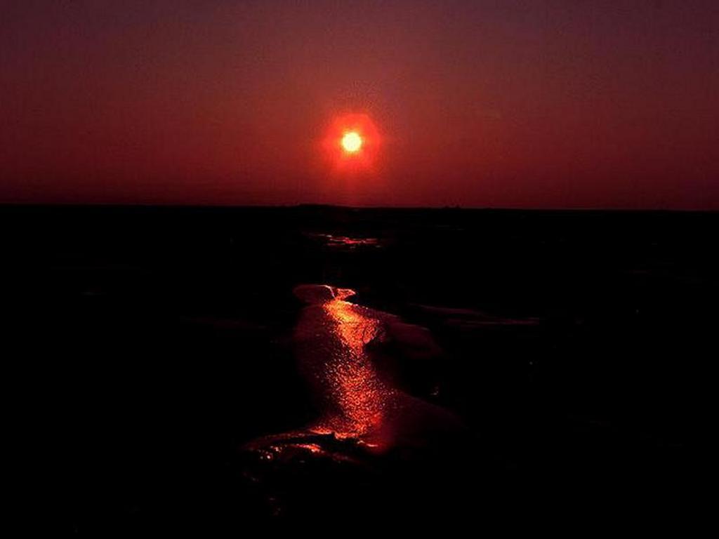 Nature Wallpaper: Ocean Sunset
