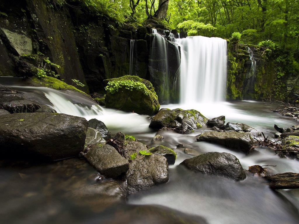 Nature Wallpaper: Oirase Gorge