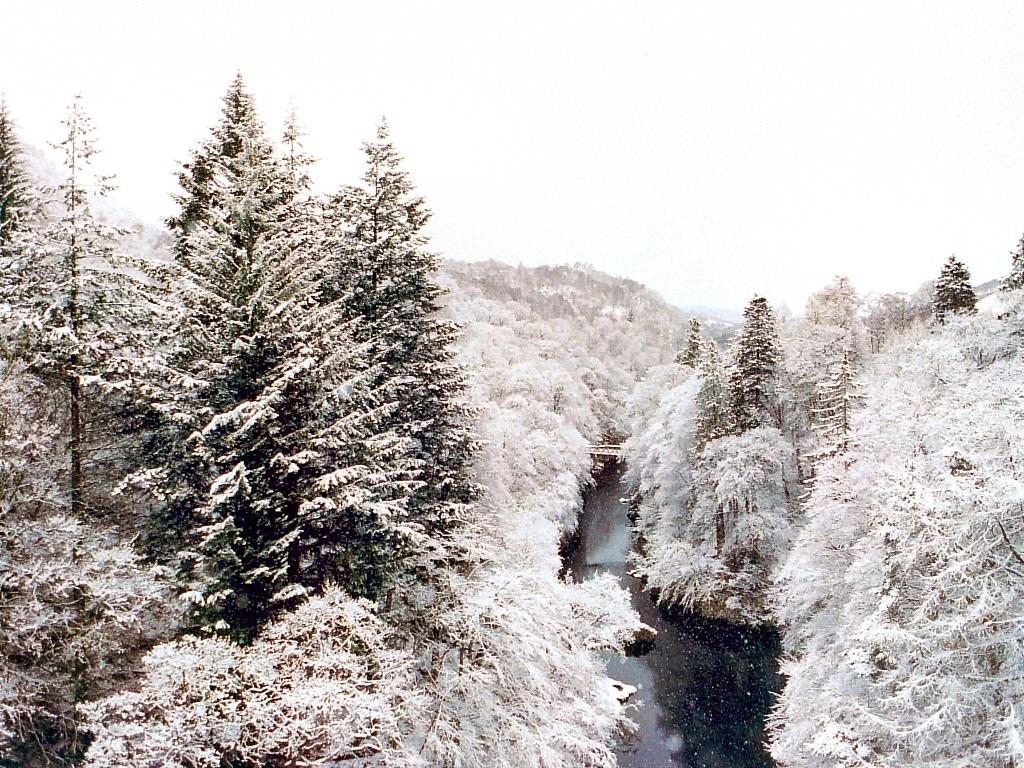 Nature Wallpaper: Pass of Killiecrankie - Scotland