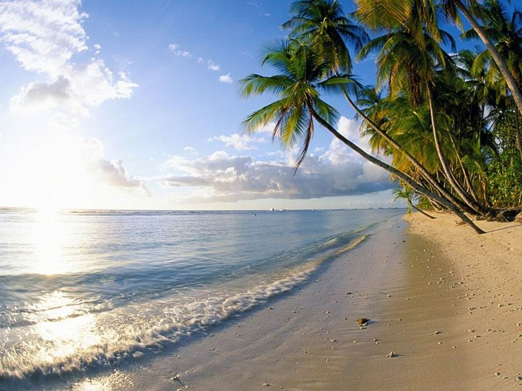 Nature Wallpaper: Pigeon Point - Tobago