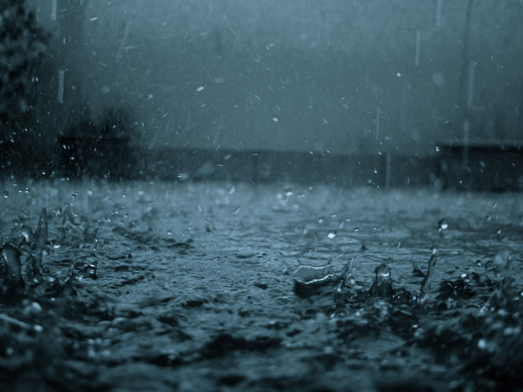 Nature Wallpaper: Rain