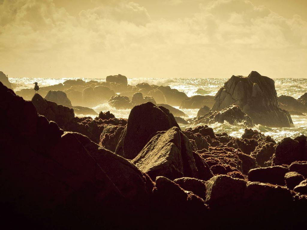 Nature Wallpaper: Rocky Beach