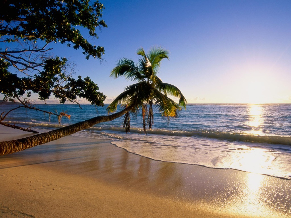 Nature Wallpaper: Silhouette Island