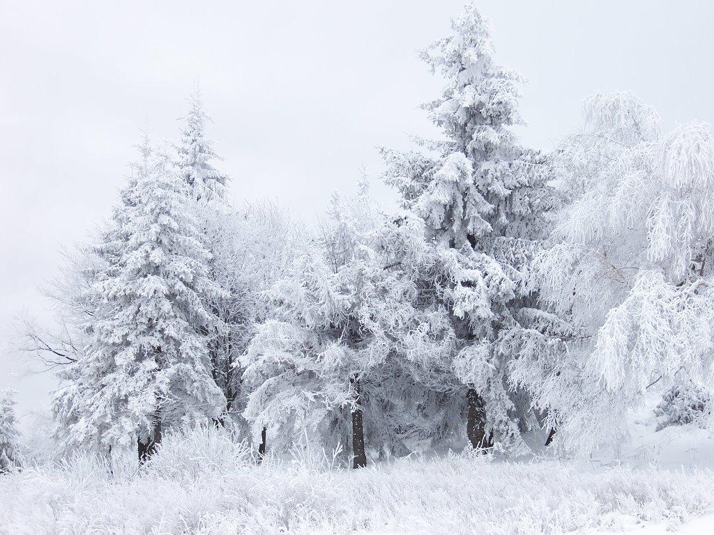 Nature Wallpaper: Snow Scene at Shipka Pass