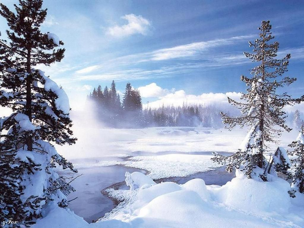 Nature Wallpaper: Snow Times